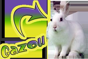 Gazou lapin magicien spectacles enfants